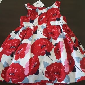 Janie and Jack Dresses - Janie and jack NWT red flowers dress Patriotic